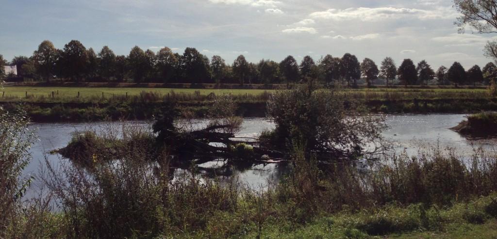 Herbstliche Wanderung- Die Lippeauen in Lippstadt